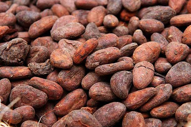 Superfoods cacao