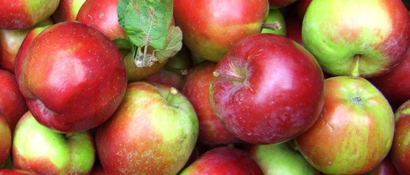 Moles and apple cider vinegar