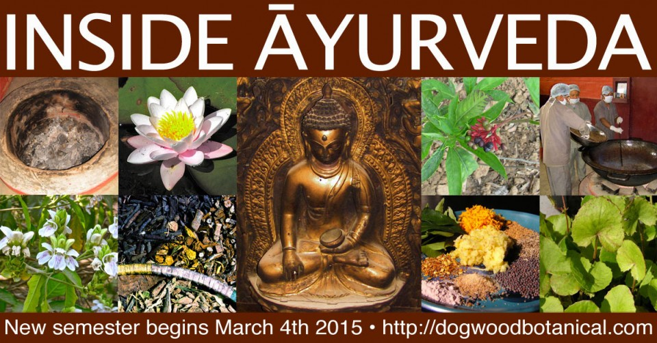 inside_ayurveda_mar04